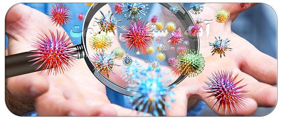 راه های وارد شدن میکروب به بدن