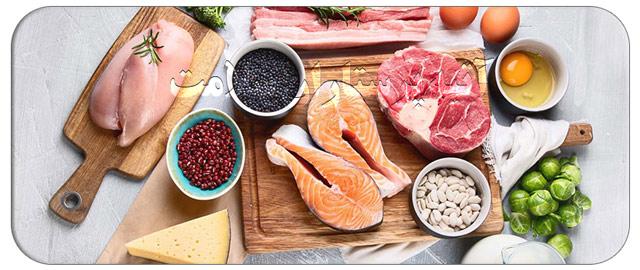 غذاهای پروتئین دار و توصیه های مهم به مراقبین در منزل