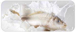 عوارض خوردن ماهی با شیر