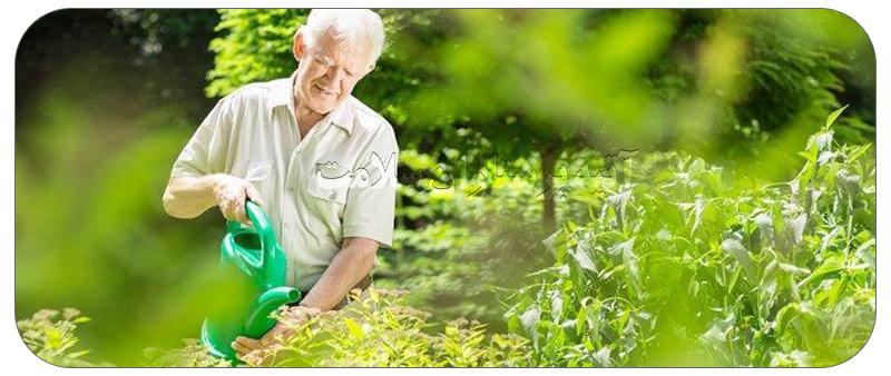 چگونه دوران سالمندی خوبی داشته باشیم ؟